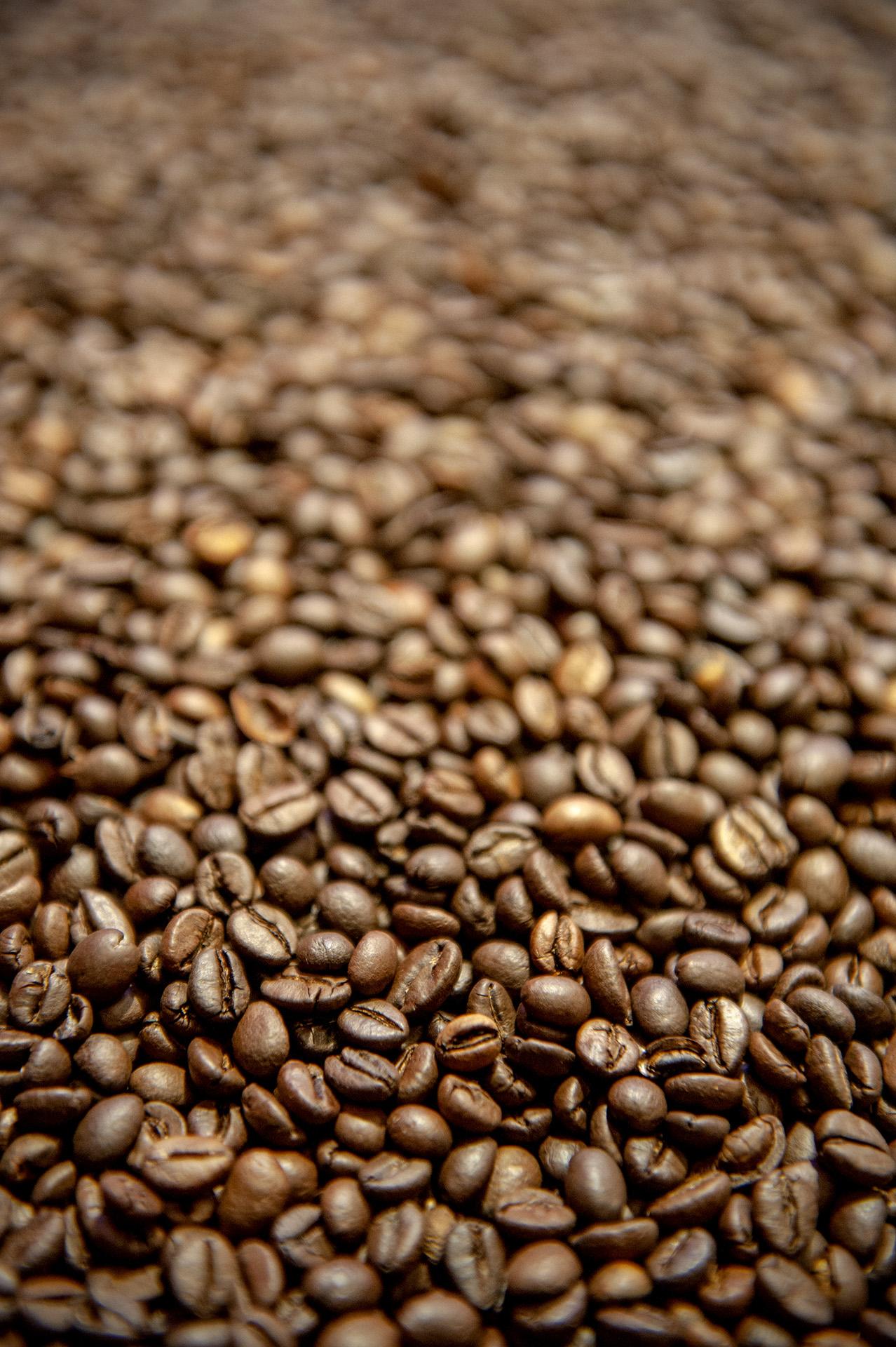 chicchi di caffé dopo la tostatura